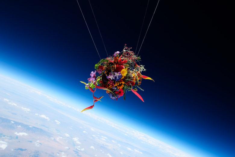 Exobotanical Nevada Makoto Azuma in Space