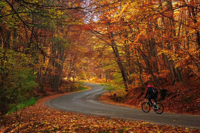 leaf peep by bike in New England
