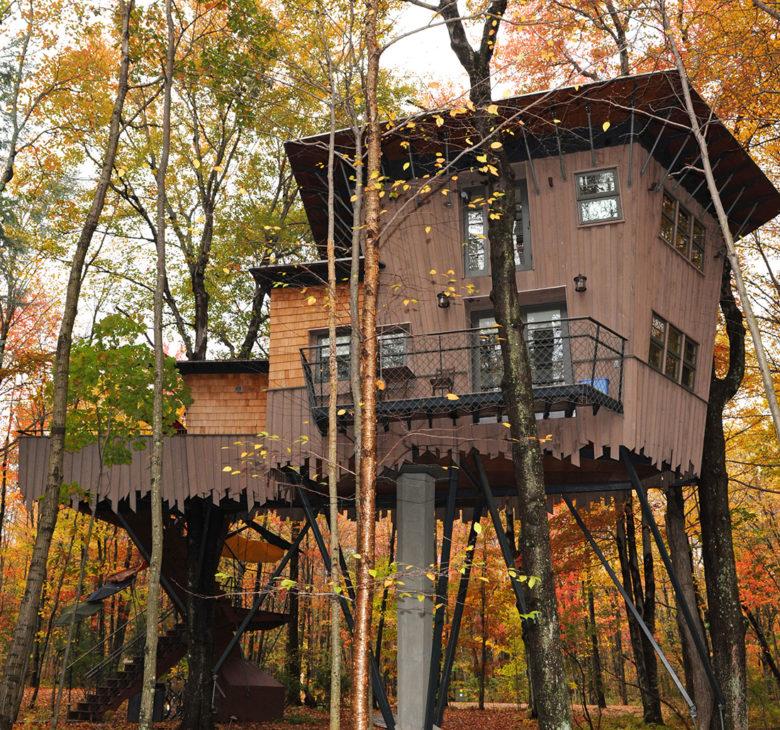 treehouse leap peeping at Winivan Farms