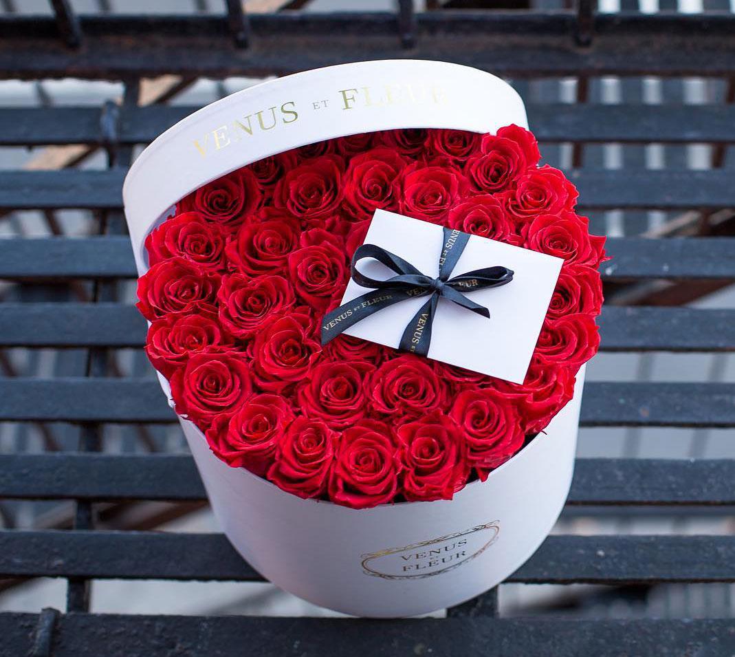 Venus Et Fleur - Rosebox