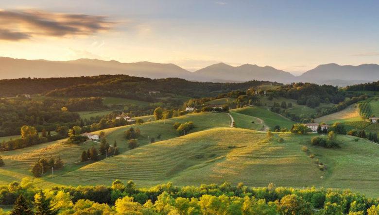Cantina Borgoluca Veneto Italy