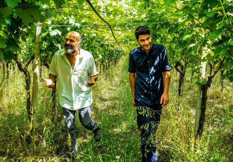 Organic wine by Dry Farm Wines