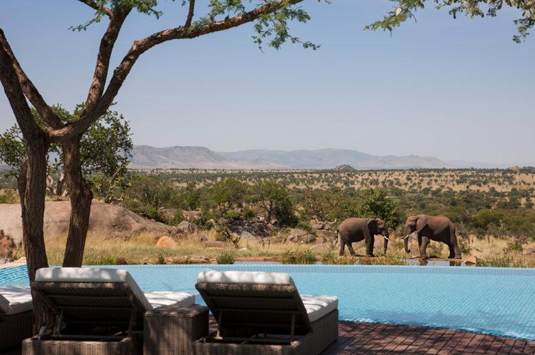 Four Seasons Safari Lodge Serengeti infinity pool