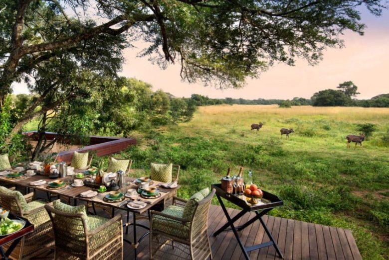 Rhino luxury african safari KwaZulu