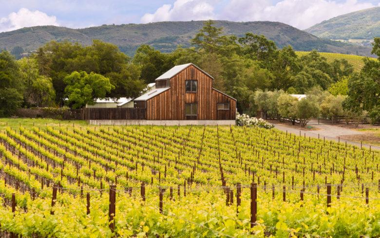 Luxury wine tours Napa Valley wine train
