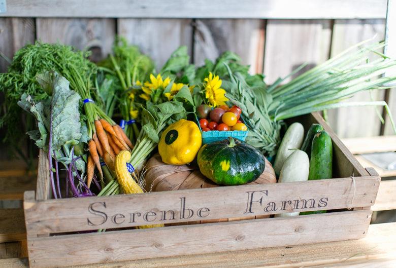 Serenbe Farms agrihood in Georgia