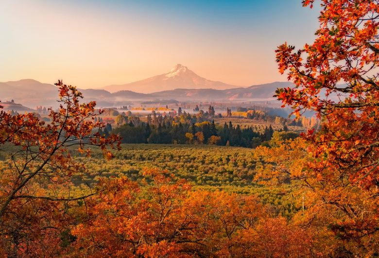 enjoy Fall foliage bike tours in Oregon