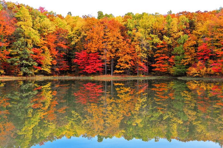 enjoy Fall foliage bike tours in Virginia