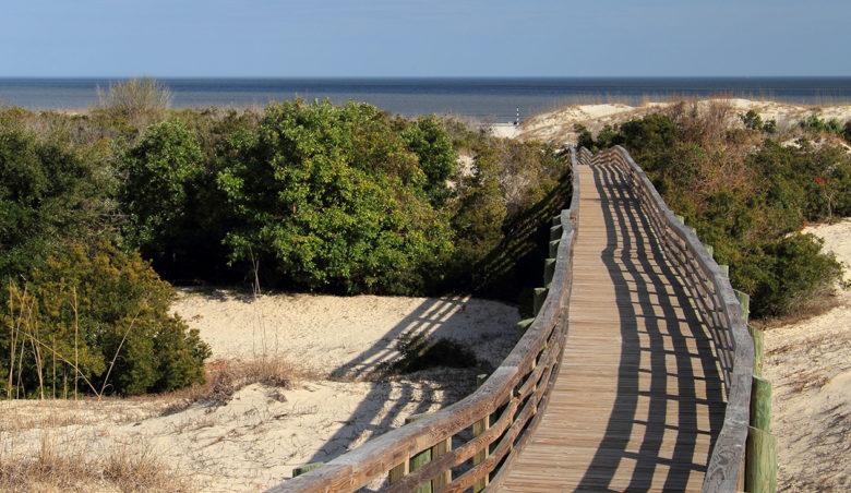 best-beach-on-the-east-coast-Cumberland-Island