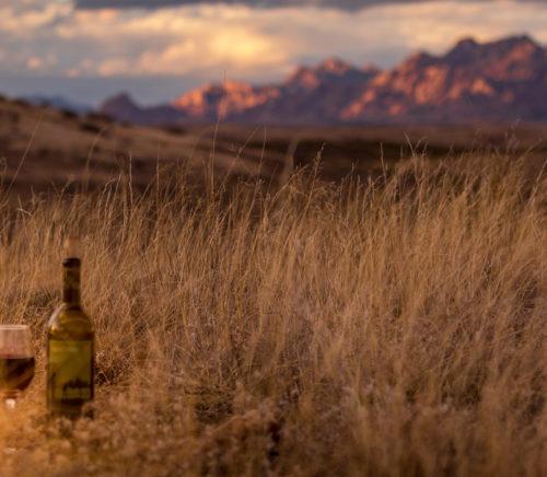 Tombstone Arizona wine 1881 Preserve