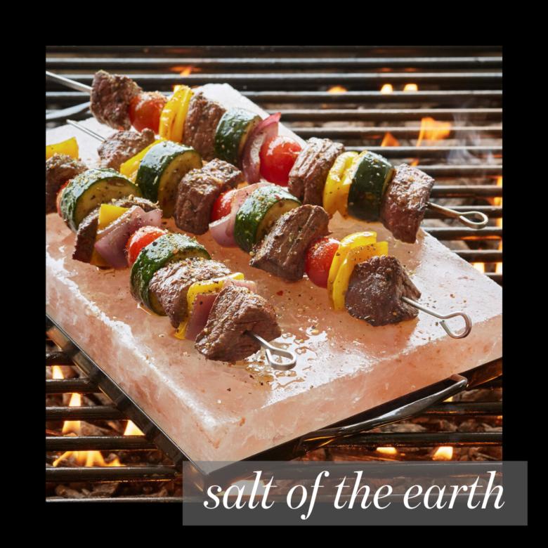 best grill gadget salt plant by Umaid
