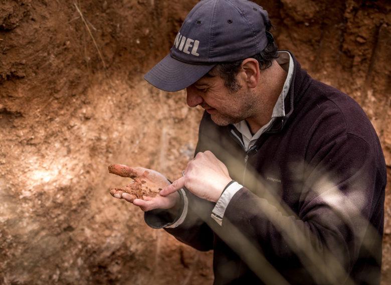 soil testing Arizona wine region Tombstone