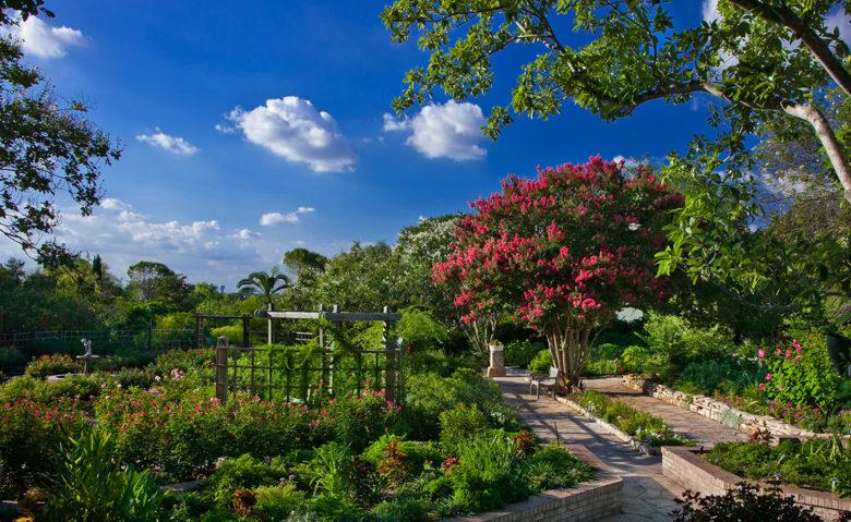 San Antonio Botanical Garden things to do